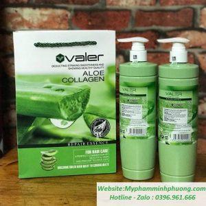 Cap-dau-goi-xa-tri-rung-toc-nha-dam-lo-hoi-tai-sinh-valer-collagen-aloe-essence-689X677