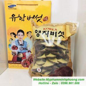 Nam-linh-chi-nui-da-tai-nho-han-quoc-512x512-55,2kb