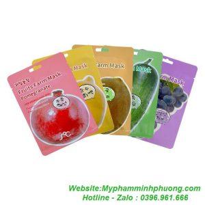 mat-na-hoa-qua-rainbow-fruit-farm-mask-pack-han-quoc-1